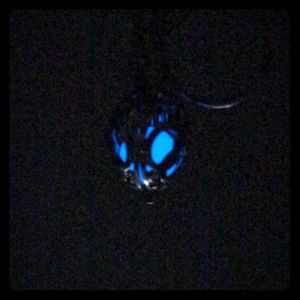 Jewelry - Essential Oil Necklace Glow In The Dark